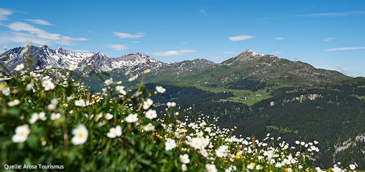 Neue Schweizer Kooperation mit Arosa Tourismus
